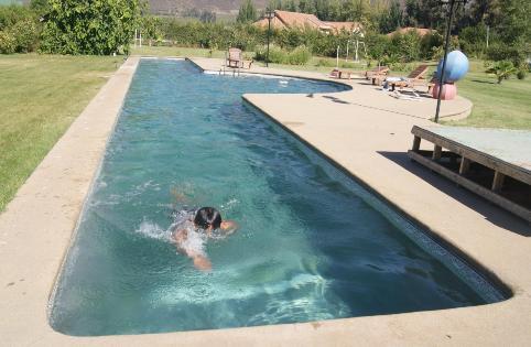 Triatleta siempre for Piscina 25 metros